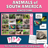 Animals of South America Bingo Game and Matching Activities