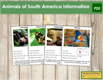 Animals of South America (Red)
