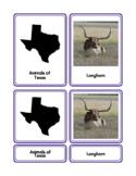 Animals of Texas