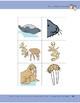 Animals of the Arctic Tundra: Center Activity