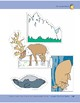 Animals of the Arctic Tundra: Storyboard Pieces