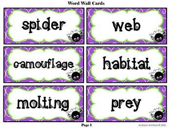 Animals of the Bible Series SPIDER