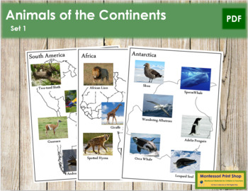 Animals of the Continents: Maps & Cards