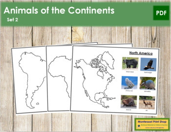 Animals of the Continents - Set 2