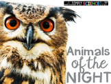 Animals of the Night {A Nocturnal Animals Unit for Little People}