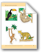 Animals of the Rainforest: Storyboard Pieces