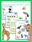 Animals of the savanna worksheet français anglais
