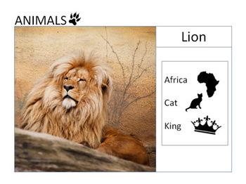 Animals pictures and related vocabulary (extended)