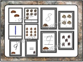 Animals that hibernate MATH printables bundle