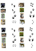 Animals' tracks Matching activity