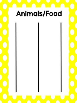 Animals vs. Foods Category Sorting