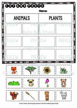 Animals vs Plants Worksheets | Cut and Paste