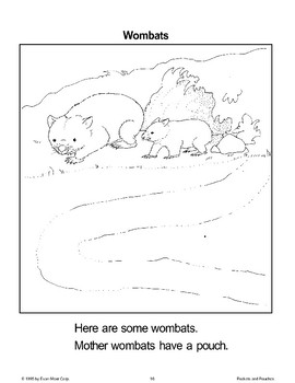 Animals with Pouches: Wombats