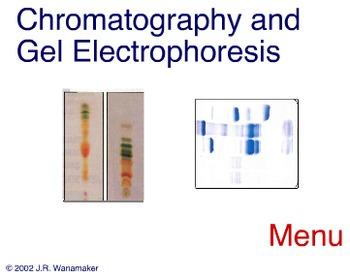 Animation - Chromatography & Gel Electrophoresis