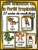 Animaux de la forêt tropicale - Cartes de vocabulaire- French Rainforest Animals