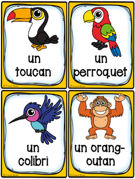 Animaux de la forêt tropicale - Cartes de vocabulaire- French Rainforest Animals