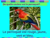 Animaux et Couleurs (Animals and Colors in French) power point