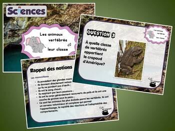 Animaux, les vertébrés (Cartes à tâches) (Sciences)