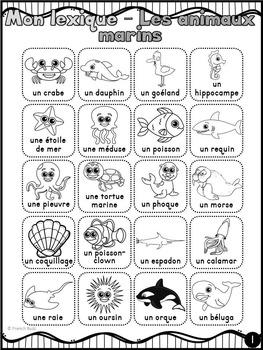 Animaux marins - mur de mots et lexique (32 mots) - French animals