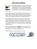 Animoto Short Story Video Summary and Rubric