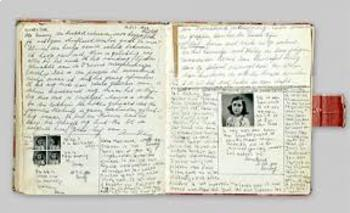 Anne Frank - Perceptions in Historical Literature