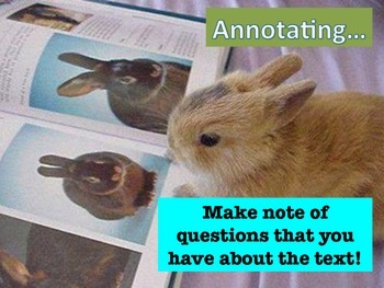 Annotating While Reading and Writing: Easy Reference Mini-Posters!