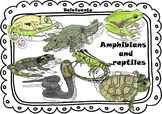 Amphibians        and     reptiles clip art