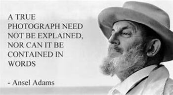 Ansel Adams Profile