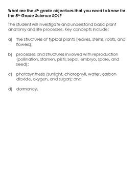 Answer Key: 4.4 Plant Review