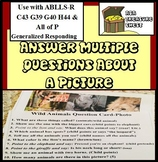 Answer Multiple Questions About A Busy Complex Picture,  ABA Autism ABLLS-R