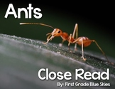Ant Close Read
