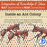 Ant Colony Diagrams Illustrations Task Card RI.3.7 RI.3.8 Distance Learning
