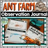 Ant Farm Observational Journal