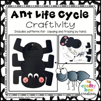 Ant Life Cycle Craftivity