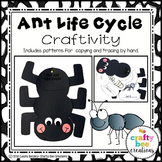Ant Life Cycle Craft