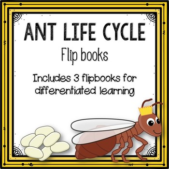 Ant Life Cycle Flipbook