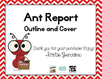 Ant Report Outline