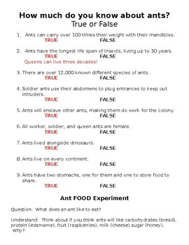 Ant Science Experiments