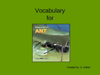 Ant Vocabulary Houghton Mifflin Series