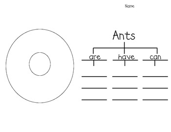 Ant Writing (includes, graphic organizers, easy reader, craftivity, and more)