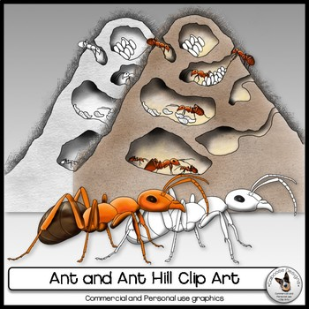 Ant and Ant Hill Realistic clip art