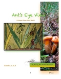 Ant's Eye View Visual Arts Lesson Grades 1 to 3