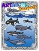 Antarctic Animal Research Book