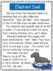 Antarctic Animals - A First Grade Literacy Center