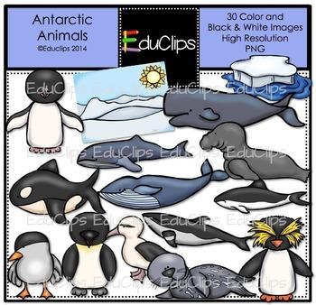 Antarctic Animals Clip Art Bundle {Educlips Clipart}