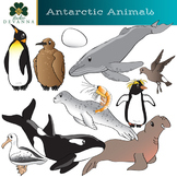 Antarctic Animals Clip Art - South Pole Wildlife