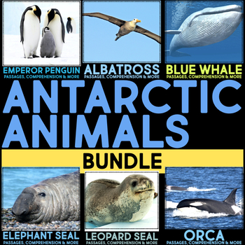 Antarctic Animals: Informational Article, QR Code Research Page & Fact Sort