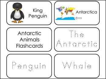 Antarctic Animals themed Picture Word Flash Cards.