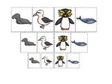 Antarctic Animals themed Size Sorting. Printable Preschool Game