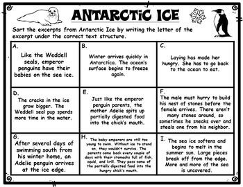 Antarctic Ice Text Structures Sort